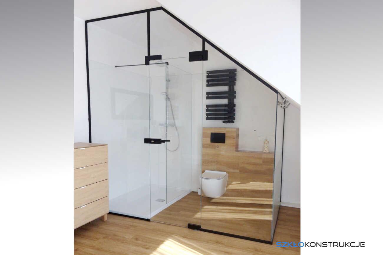 zabudowa szklana wewnątrz której jest prysznic i toaleta